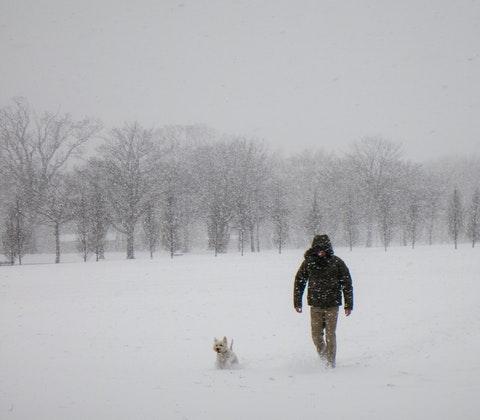 Man och hund i snöoväder